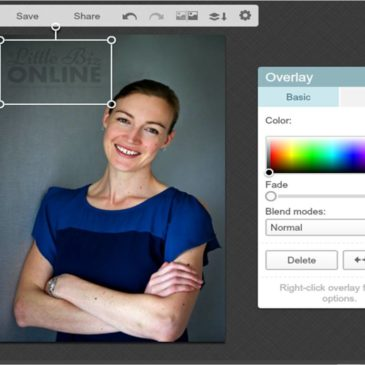 How to… watermark images using PicMonkey