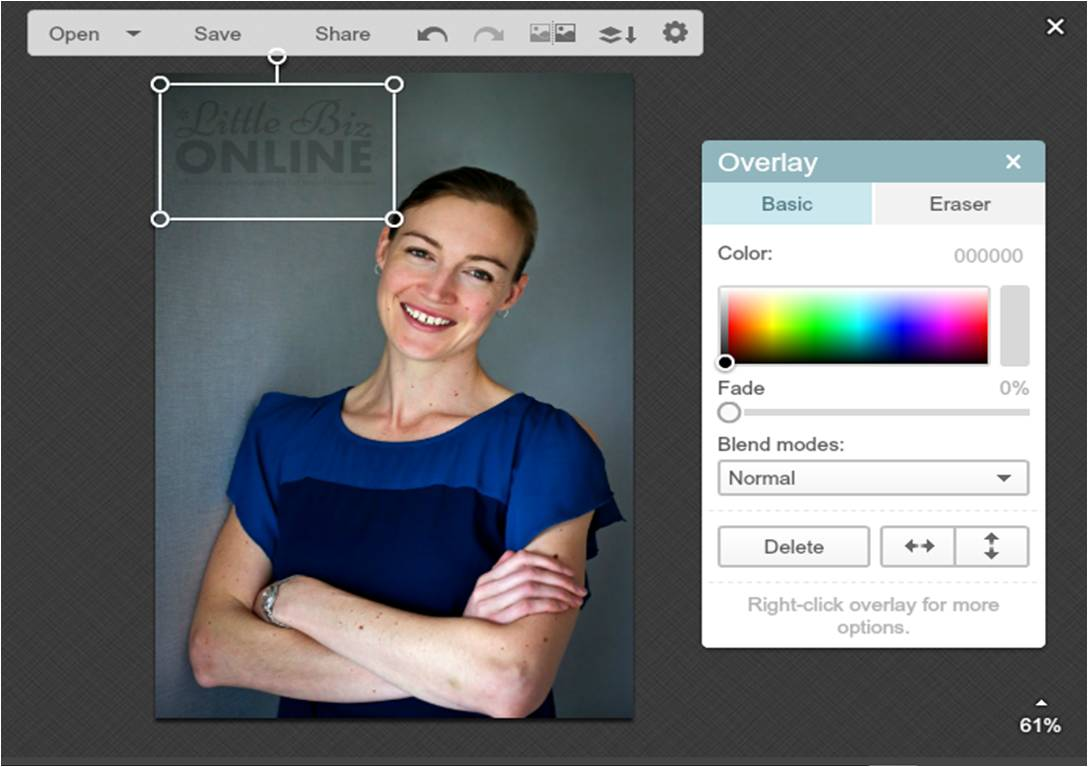 how to watermark an image in picmonkey